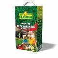 Sjeme trave FLORIA -  kralj travnjaka - 2 KG kom